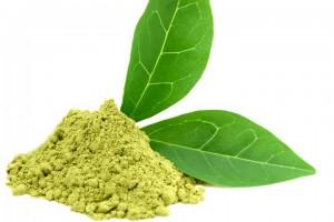 mega-q-protect-zielona-herbata